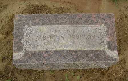 JOHNSON, ALBERT ARTHUR - Lawrence County, Arkansas | ALBERT ARTHUR JOHNSON - Arkansas Gravestone Photos