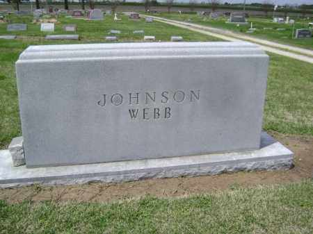 JOHNSON-WEBB FAMILY STONE,  - Lawrence County, Arkansas |  JOHNSON-WEBB FAMILY STONE - Arkansas Gravestone Photos