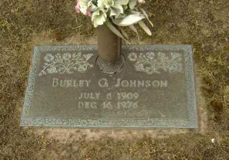 JOHNSON, BURLEY GEORGE - Lawrence County, Arkansas | BURLEY GEORGE JOHNSON - Arkansas Gravestone Photos