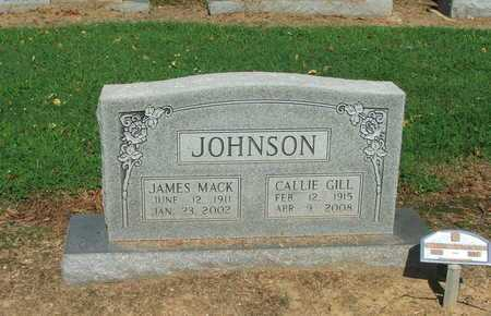JOHNSON, CALLIE - Lawrence County, Arkansas | CALLIE JOHNSON - Arkansas Gravestone Photos