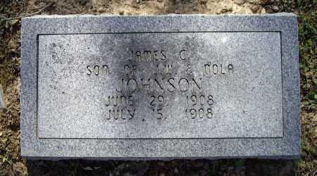 JOHNSON, JAMES C. - Lawrence County, Arkansas | JAMES C. JOHNSON - Arkansas Gravestone Photos