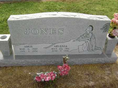 ALLISON JONES, ARVENIA - Lawrence County, Arkansas | ARVENIA ALLISON JONES - Arkansas Gravestone Photos