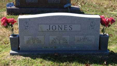JONES, LARRY - Lawrence County, Arkansas | LARRY JONES - Arkansas Gravestone Photos