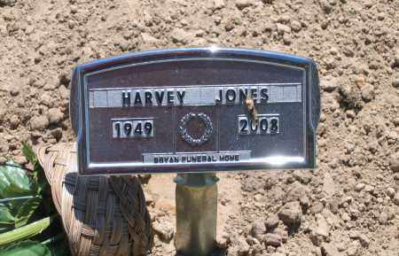 JONES, HARVEY LEE - Lawrence County, Arkansas | HARVEY LEE JONES - Arkansas Gravestone Photos