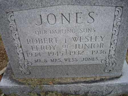 JONES, JR., WESLEY - Lawrence County, Arkansas | WESLEY JONES, JR. - Arkansas Gravestone Photos