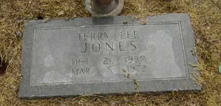 JONES, TERRY LEE - Lawrence County, Arkansas | TERRY LEE JONES - Arkansas Gravestone Photos