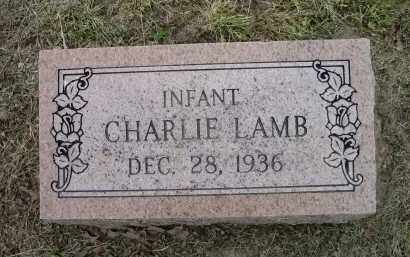 LAMB, CHARLIE - Lawrence County, Arkansas | CHARLIE LAMB - Arkansas Gravestone Photos