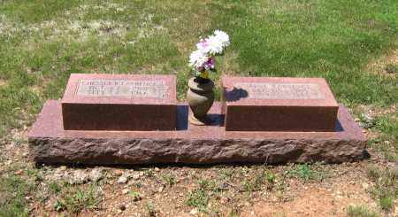 GRIFFITH LAWRENCE, IRENE - Lawrence County, Arkansas | IRENE GRIFFITH LAWRENCE - Arkansas Gravestone Photos