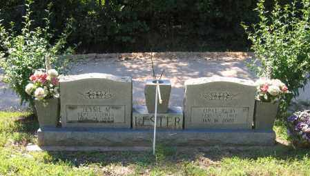 LESTER, JESSIE MARTIN - Lawrence County, Arkansas | JESSIE MARTIN LESTER - Arkansas Gravestone Photos
