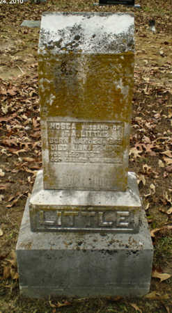 LITTLE, HOSEA - Lawrence County, Arkansas | HOSEA LITTLE - Arkansas Gravestone Photos