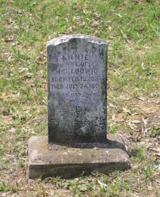 LUDWIG, ANNIE - Lawrence County, Arkansas | ANNIE LUDWIG - Arkansas Gravestone Photos