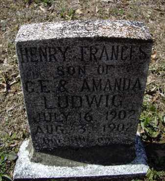 LUDWIG, HENRY FRANCIS - Lawrence County, Arkansas | HENRY FRANCIS LUDWIG - Arkansas Gravestone Photos