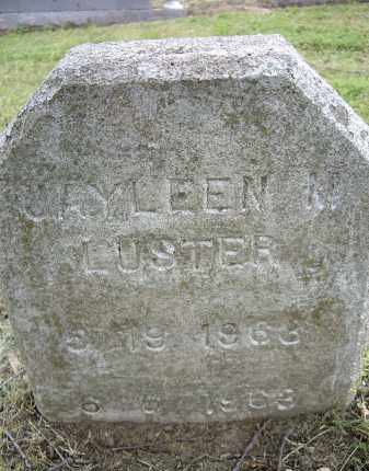 LUSTER, JAYLEEN MARIE - Lawrence County, Arkansas | JAYLEEN MARIE LUSTER - Arkansas Gravestone Photos