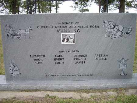 MANNING, CLIFFORD AND NELLIE - Lawrence County, Arkansas | CLIFFORD AND NELLIE MANNING - Arkansas Gravestone Photos