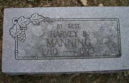 MANNING, HARVEY B. - Lawrence County, Arkansas | HARVEY B. MANNING - Arkansas Gravestone Photos