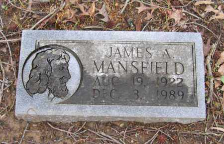 MANSFIELD, JAMES ALMON - Lawrence County, Arkansas | JAMES ALMON MANSFIELD - Arkansas Gravestone Photos