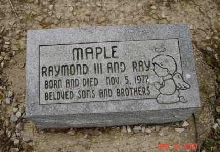 MAPLE, RAYMOND III - Lawrence County, Arkansas | RAYMOND III MAPLE - Arkansas Gravestone Photos