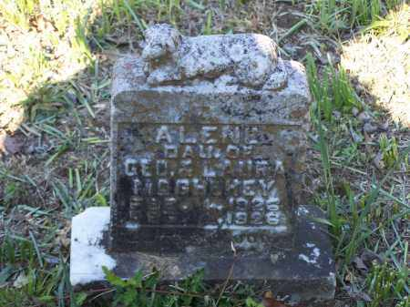 MCGHEHEY, ALENE - Lawrence County, Arkansas | ALENE MCGHEHEY - Arkansas Gravestone Photos