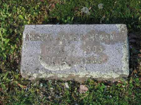 MCKAMEY, ROBERT JAMES - Lawrence County, Arkansas | ROBERT JAMES MCKAMEY - Arkansas Gravestone Photos