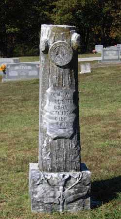 MCALISTER, WILLIAM N. - Lawrence County, Arkansas | WILLIAM N. MCALISTER - Arkansas Gravestone Photos
