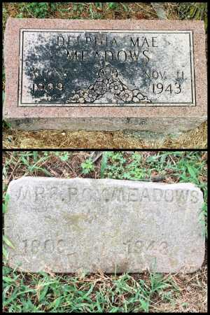 MEADOWS, DELPHIA - Lawrence County, Arkansas | DELPHIA MEADOWS - Arkansas Gravestone Photos