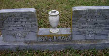 MEADOWS, ROY ELMER - Lawrence County, Arkansas | ROY ELMER MEADOWS - Arkansas Gravestone Photos