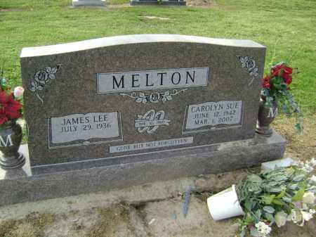 MELTON, CAROLYN SUE - Lawrence County, Arkansas | CAROLYN SUE MELTON - Arkansas Gravestone Photos