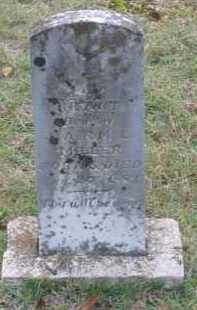 MILLER, INFANT DAUGHTER - Lawrence County, Arkansas | INFANT DAUGHTER MILLER - Arkansas Gravestone Photos