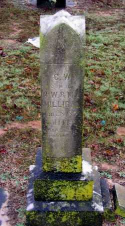 "MILLIGAN, CHARLES WALTER ""C. W."" - Lawrence County, Arkansas 