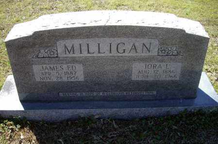 MILLIGAN, IORA LEVINA - Lawrence County, Arkansas | IORA LEVINA MILLIGAN - Arkansas Gravestone Photos