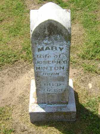 MINTON, MARY - Lawrence County, Arkansas | MARY MINTON - Arkansas Gravestone Photos