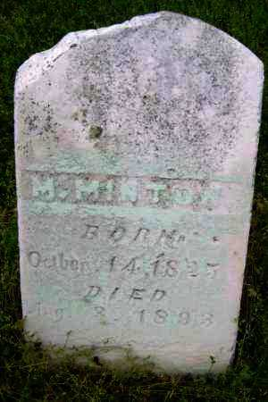 MINTON, M. - Lawrence County, Arkansas | M. MINTON - Arkansas Gravestone Photos
