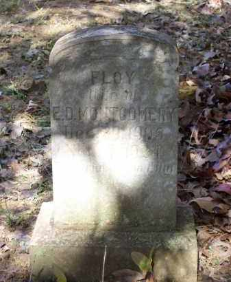 MONTGOMERY, FLOY - Lawrence County, Arkansas | FLOY MONTGOMERY - Arkansas Gravestone Photos