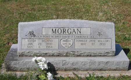 MORGAN, CLYDE DELANO - Lawrence County, Arkansas | CLYDE DELANO MORGAN - Arkansas Gravestone Photos