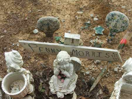 MORRIS, PENNY - Lawrence County, Arkansas | PENNY MORRIS - Arkansas Gravestone Photos