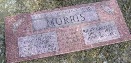 MORRIS, DEBORAH LYNN - Lawrence County, Arkansas | DEBORAH LYNN MORRIS - Arkansas Gravestone Photos