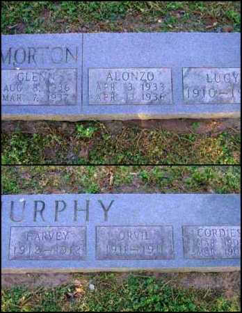 MURPHY, ORVIL - Lawrence County, Arkansas | ORVIL MURPHY - Arkansas Gravestone Photos