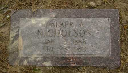 NICHOLSON, WALKER A. - Lawrence County, Arkansas | WALKER A. NICHOLSON - Arkansas Gravestone Photos