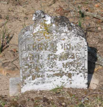 NORRIS, JERRY - Lawrence County, Arkansas   JERRY NORRIS - Arkansas Gravestone Photos