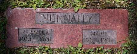 NUNNALLY, ALAMEDA - Lawrence County, Arkansas | ALAMEDA NUNNALLY - Arkansas Gravestone Photos