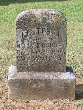 OSBURN, LESTER A. - Lawrence County, Arkansas | LESTER A. OSBURN - Arkansas Gravestone Photos