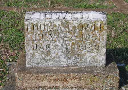 OWEN, LOUISA C. - Lawrence County, Arkansas | LOUISA C. OWEN - Arkansas Gravestone Photos