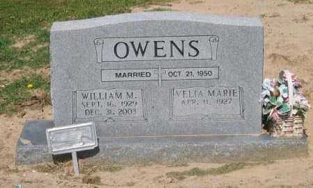 OWENS, WILLIAM M. - Lawrence County, Arkansas | WILLIAM M. OWENS - Arkansas Gravestone Photos