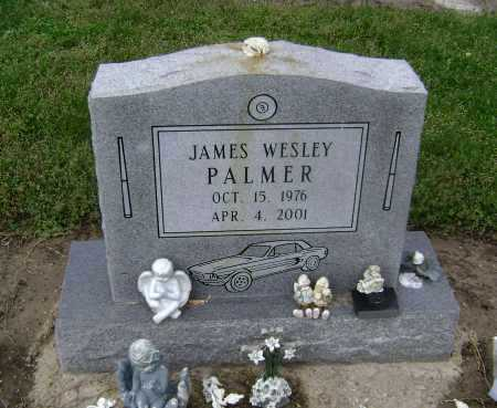 PALMER, JAMES WESLEY - Lawrence County, Arkansas | JAMES WESLEY PALMER - Arkansas Gravestone Photos
