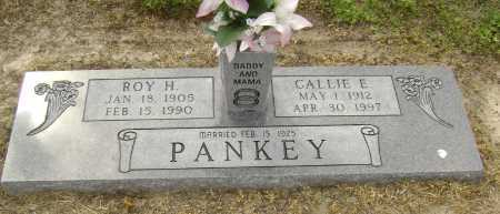 PANKEY, CALLIE ELIZABETH - Lawrence County, Arkansas | CALLIE ELIZABETH PANKEY - Arkansas Gravestone Photos