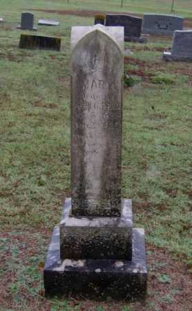 "PENN, MARY MARTHA ""POLLY"" - Lawrence County, Arkansas 