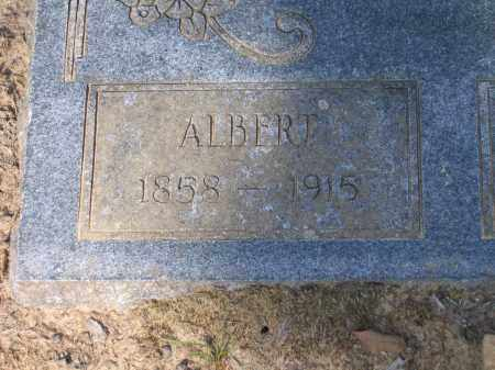 PETTYJOHN, ALBERT - Lawrence County, Arkansas | ALBERT PETTYJOHN - Arkansas Gravestone Photos