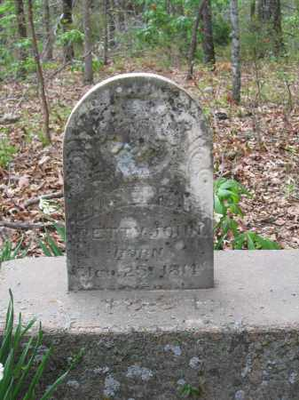 PETTYJOHN, JOSEPH F. - Lawrence County, Arkansas | JOSEPH F. PETTYJOHN - Arkansas Gravestone Photos