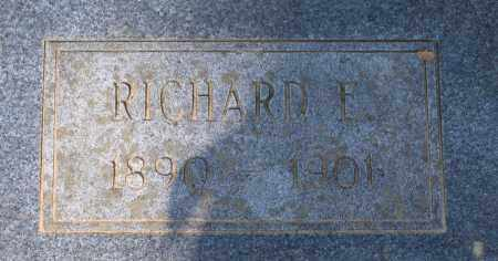 PETTYJOHN, RICHARD E. - Lawrence County, Arkansas | RICHARD E. PETTYJOHN - Arkansas Gravestone Photos