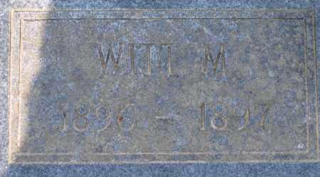 PETTYJOHN, WITT M. - Lawrence County, Arkansas | WITT M. PETTYJOHN - Arkansas Gravestone Photos
